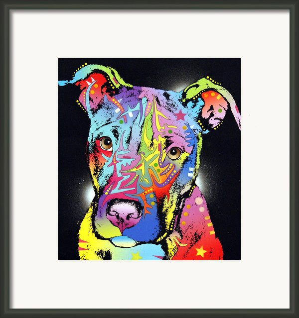 Young Bull Pitbull Framed Print By Dean Russo
