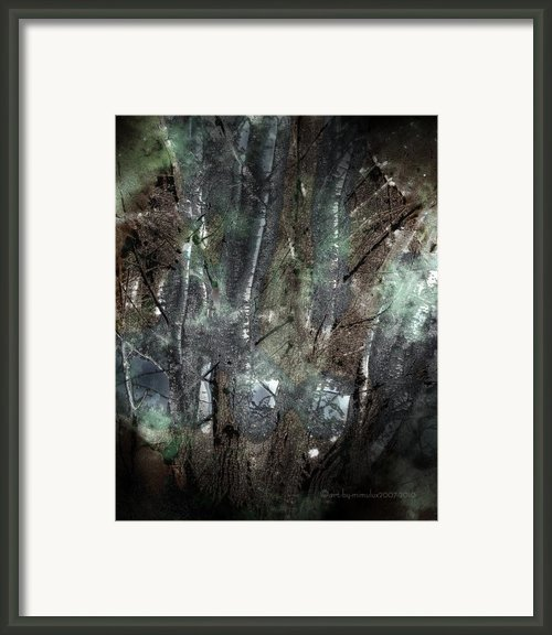 Zauberwald Vollmondnacht Magic Forest Night Of The Full Moon Framed Print By Mimulux Patricia No