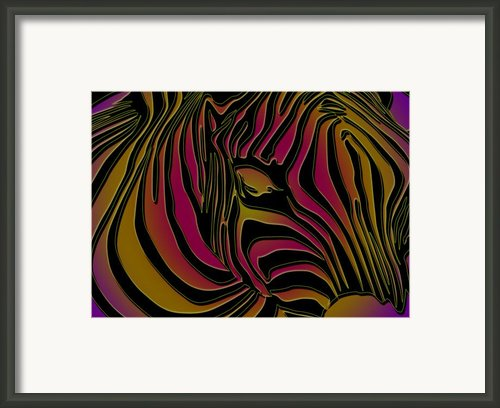 Zebra Abstract Framed Print By Dania Reichmuth