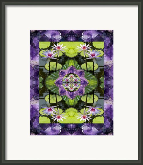 Zen Lilies Framed Print By Bell And Todd