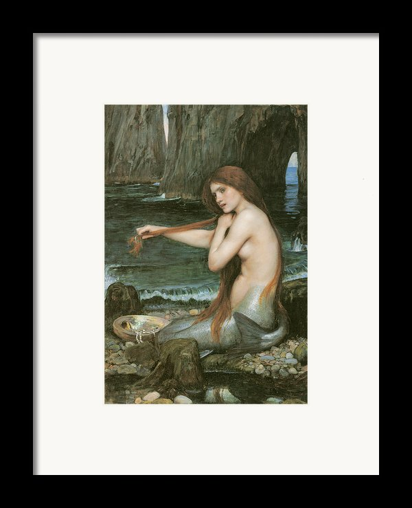 A Mermaid Framed Print By John William Waterhouse