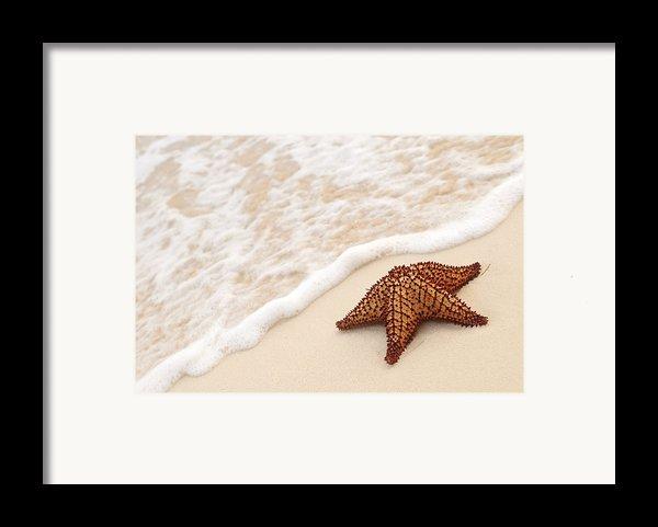 Starfish And Ocean Wave Framed Print By Elena Elisseeva