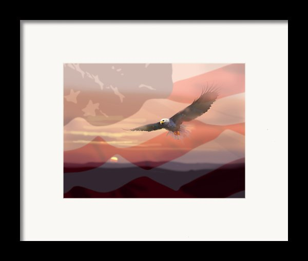 And The Eagle Flies Framed Print By Paul Sachtleben