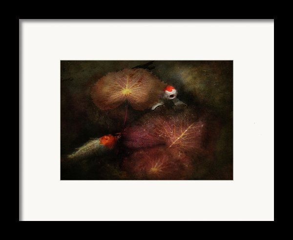 Animal - Fish - I Will Grant Your Wishes Three Framed Print By Mike Savad