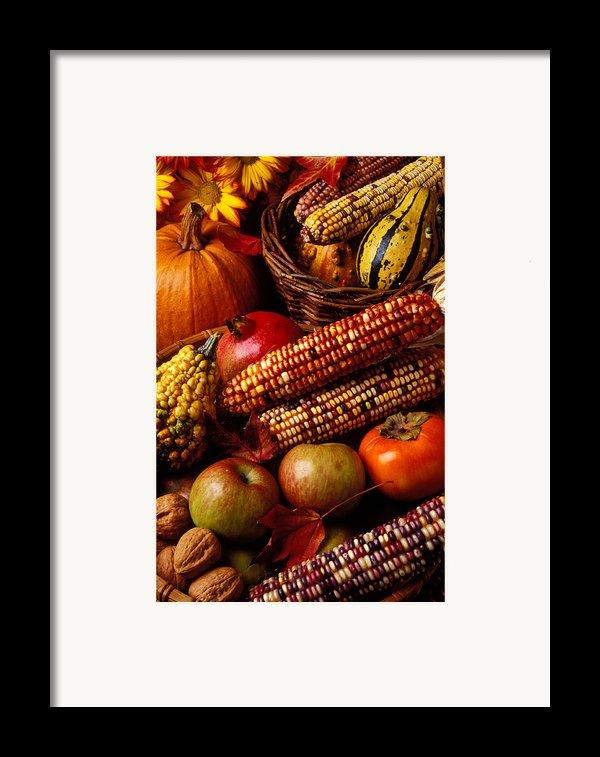 Autumn Harvest  Framed Print By Garry Gay