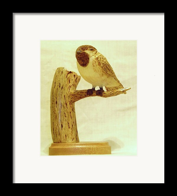 Black-capped Chickadee Framed Print By Russell Ellingsworth