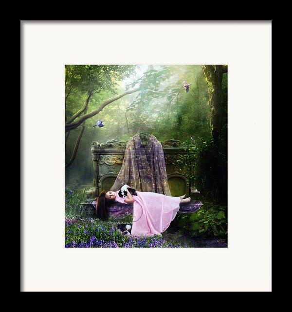 Bluebell Dreams Framed Print By Karen K