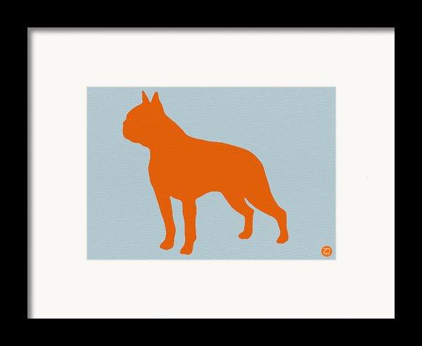 Boston Terrier Orange Framed Print By Naxart Studio
