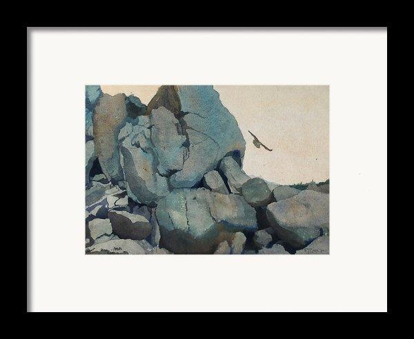 Cleft For Me Framed Print By Elizabeth Carr