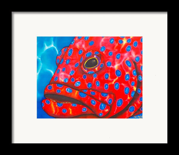 Coral Groupper Ii Framed Print By Daniel Jean-baptiste