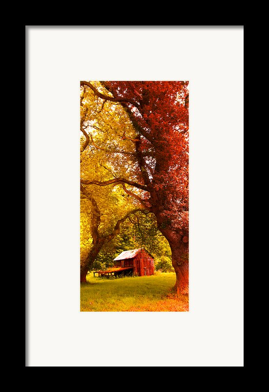 Cosy Shed Framed Print By Svetlana Sewell