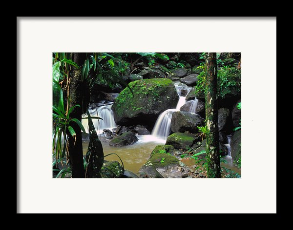 El Yunque National Forest Waterfall Framed Print By Thomas R Fletcher