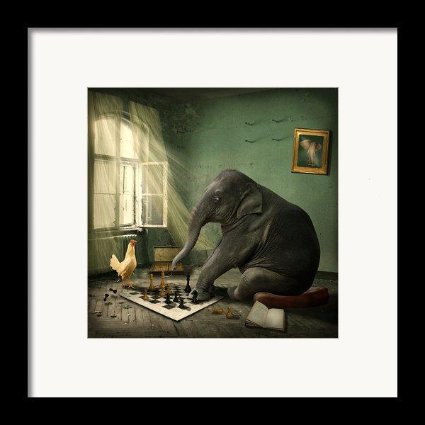 Elephant Chess Framed Print By Ethiriel  Photography