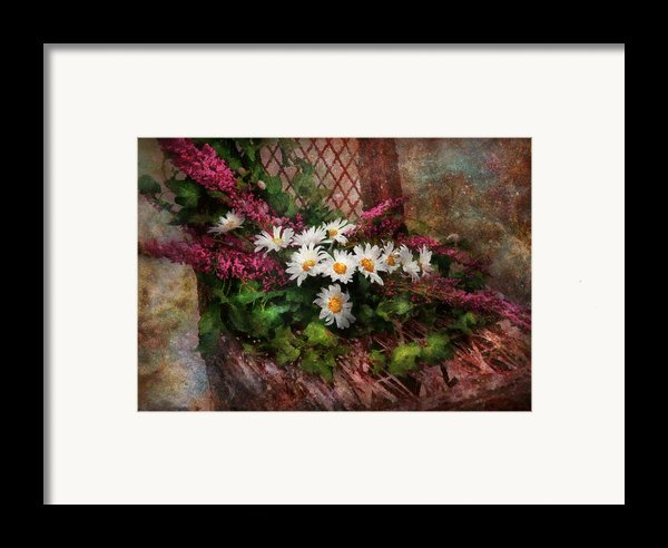 Flower - Still - Seat Reserved Framed Print By Mike Savad