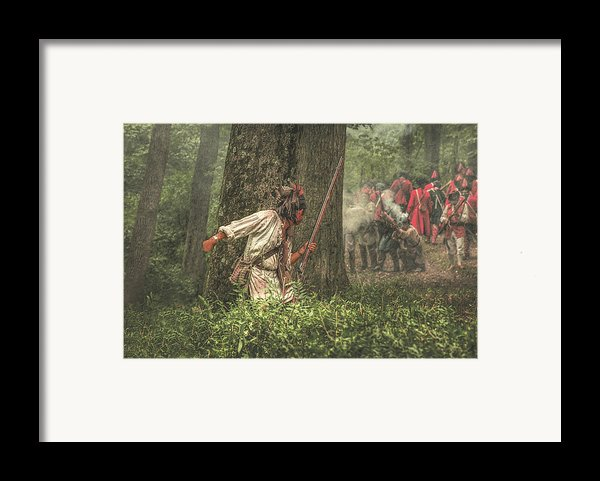 Forest Fight Framed Print By Randy Steele