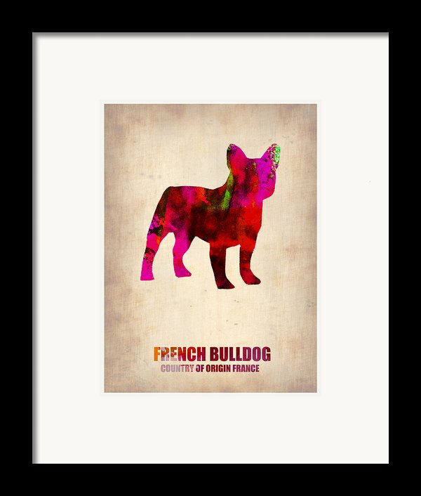 French Bulldog Poster Framed Print By Naxart Studio