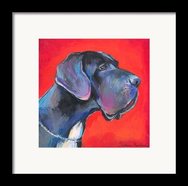 Great Dane Painting Framed Print By Svetlana Novikova