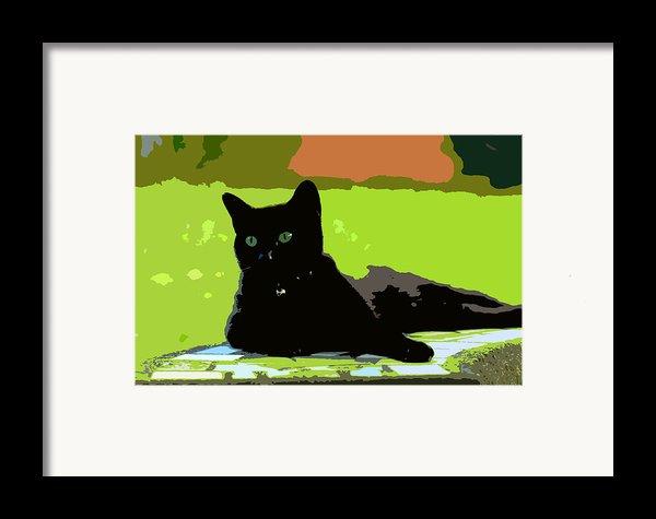 Green Eyes Framed Print By David Lee Thompson