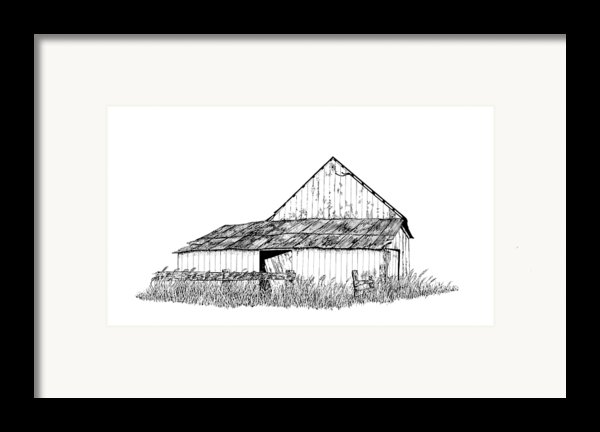 Haines Barn Framed Print By Virginia Mclaren