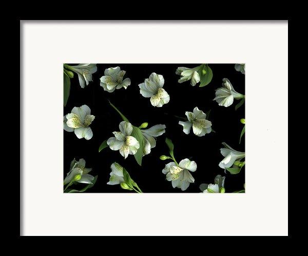 Harmony Framed Print By Christian Slanec