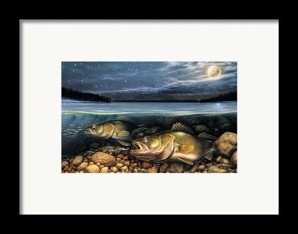 Harvest Moon Walleye 1 Framed Print By Jq Licensing