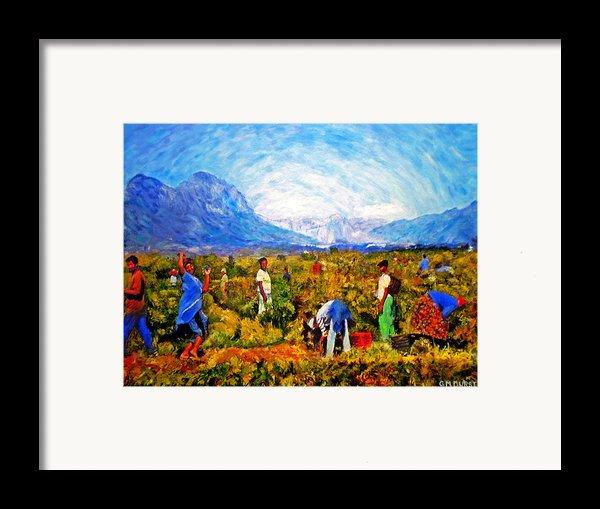 Harvest Time Framed Print By Michael Durst