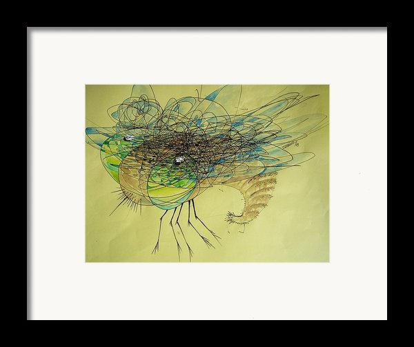 Insect Framed Print By Paulo Zerbato