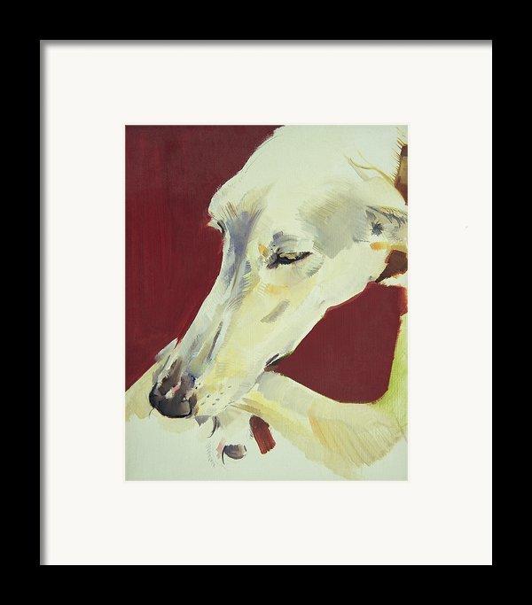 Jack Swan I Framed Print By Sally Muir