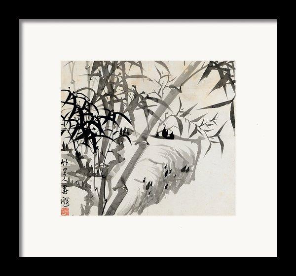 Leaf C Framed Print By Rang Tian