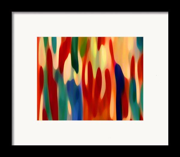 Light Through Flowers Framed Print By Amy Vangsgard