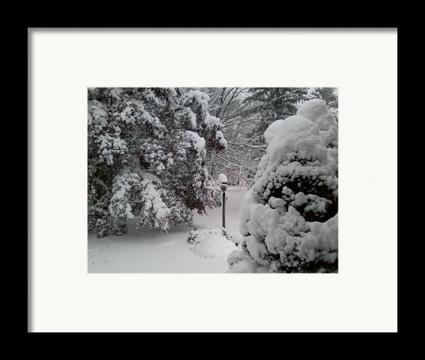 Looking Out My Front Door Framed Print By Carol Wisniewski