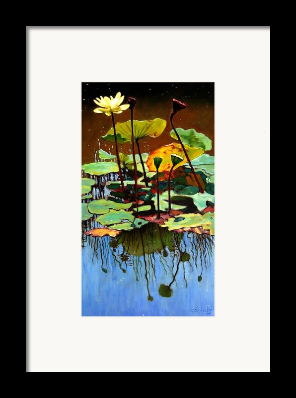 Lotus In July Framed Print By John Lautermilch