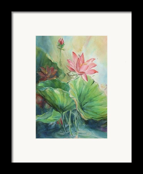 Lotus Of Hamakua Framed Print By Wendy Wiese