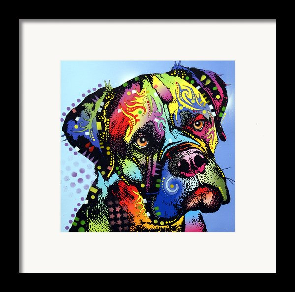 Mastiff Warrior Framed Print By Dean Russo