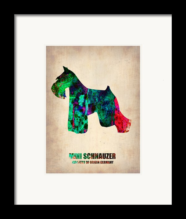Miniature Schnauzer Poster 2 Framed Print By Naxart Studio