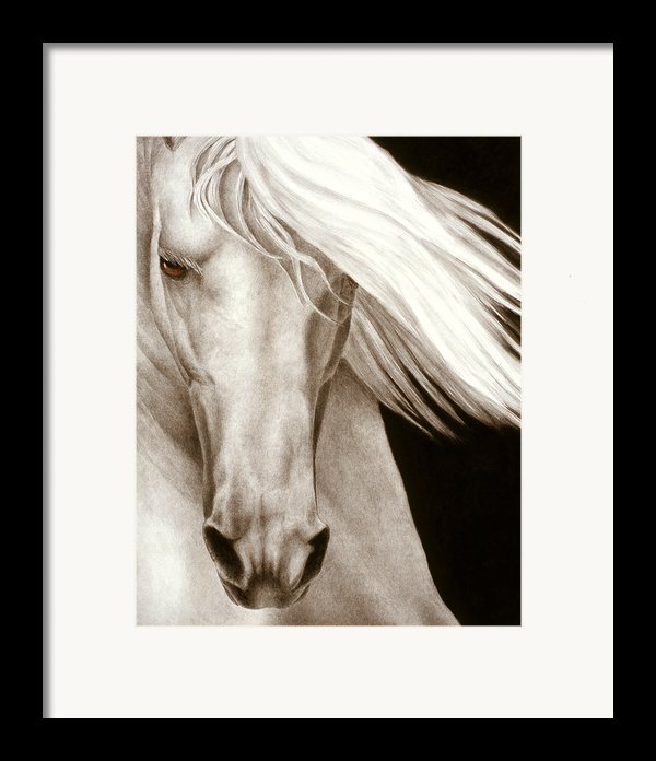 Moonrise Framed Print By Pat Erickson