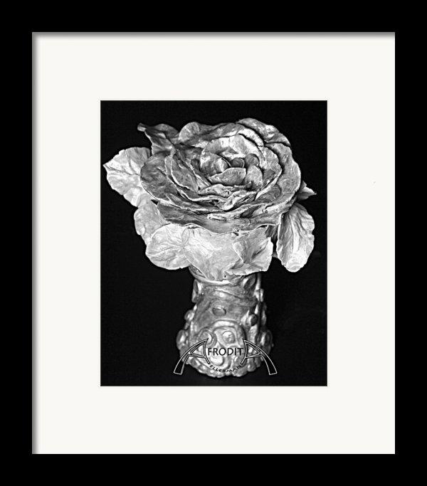 New Sculpture Framed Print By Afrodita Ellerman