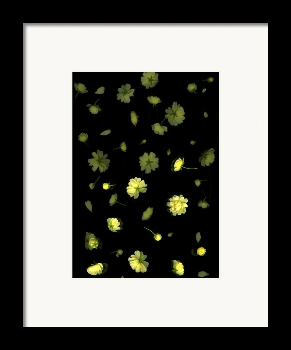 Overture-first Movement Framed Print By Christian Slanec