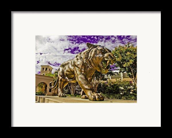 Purple And Gold Framed Print By Scott Pellegrin