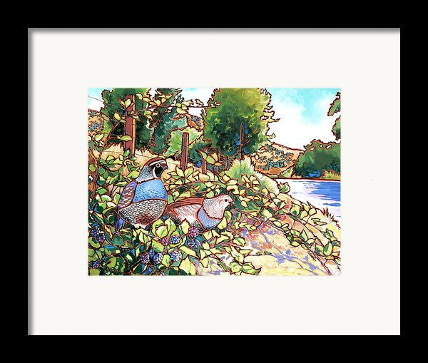 Quails And Blackberries Framed Print By Nadi Spencer
