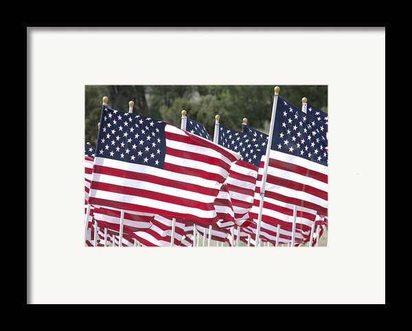 Red White And Blue Framed Print By Jerry Mcelroy