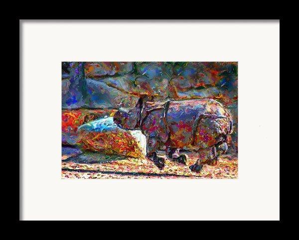 Rhino On The Run Framed Print By Marilyn Sholin