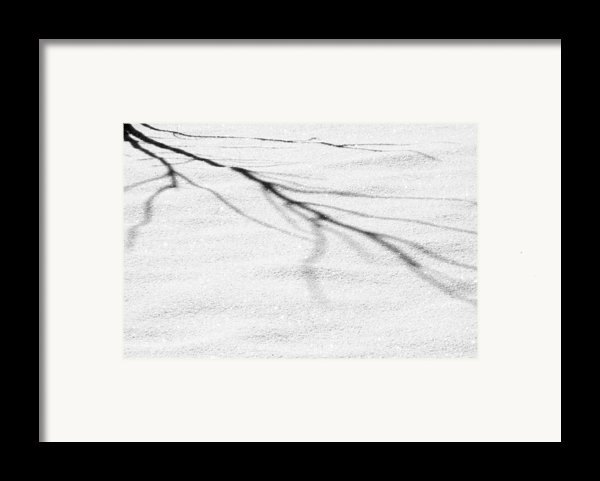 Shadows Of Winter Framed Print By Christine Till