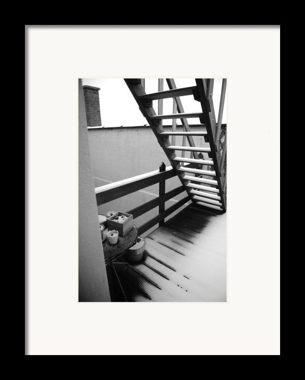 Shelter Framed Print By Jessica Rose