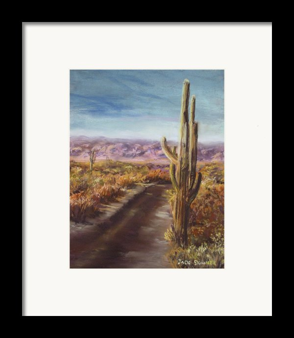 Southern Arizona Framed Print By Jack Skinner