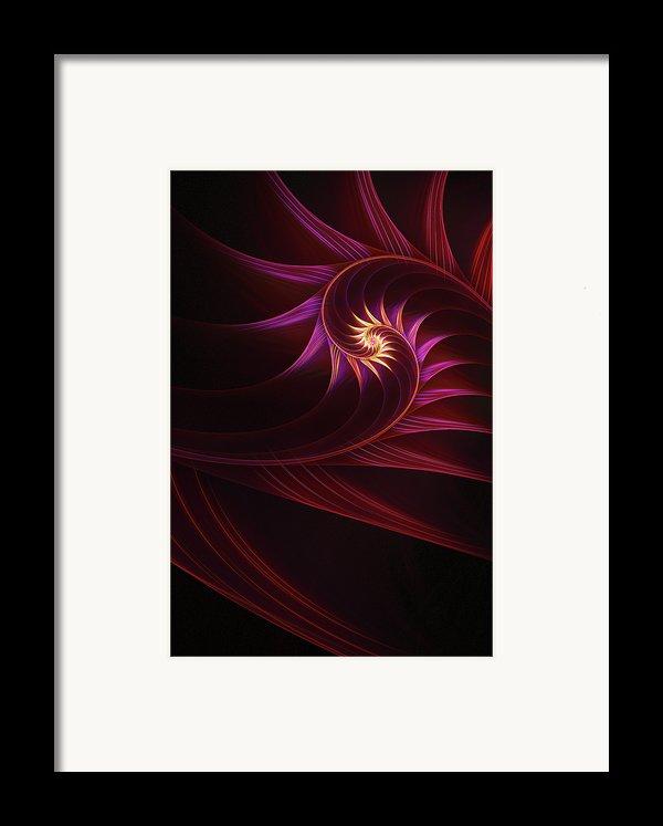 Spira Mirabilis Framed Print By John Edwards