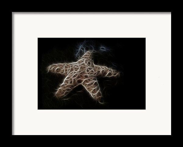Starfish Framed Print By Tilly Williams