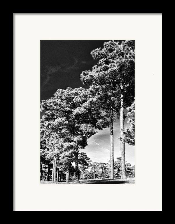 Stillness Framed Print By Gerlinde Keating - Keating Associates Inc