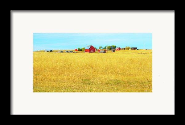 Storybook Farm Framed Print By Theresa Tahara