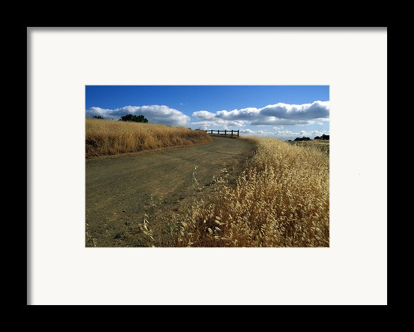 Summer Road Framed Print By Kathy Yates